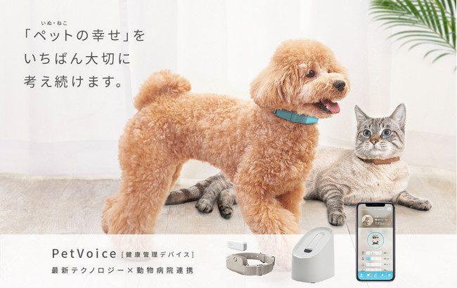 Pet Voice(ペットボイス)、シードラウンドで6000万円の第3者割当増資を実施